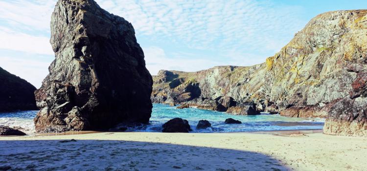 20 Endangered Languages in 2020: 8. Cornish