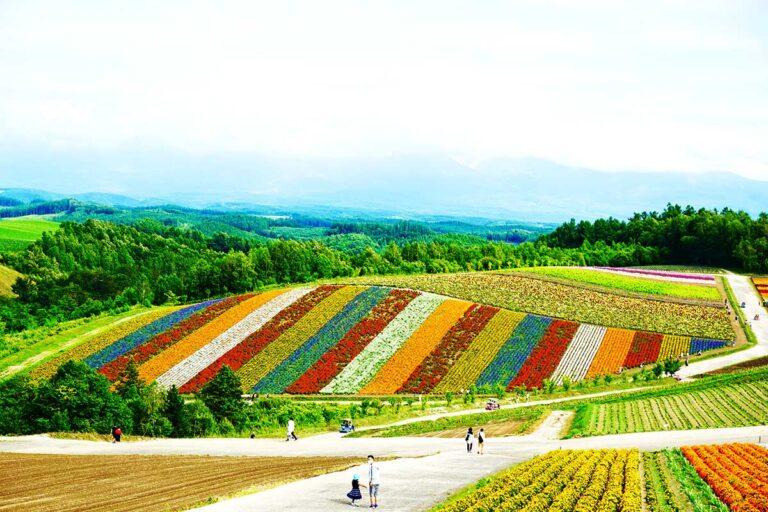 Fields in Hokkaido, Japan, the place where Hokkaido Ainu language is spoken